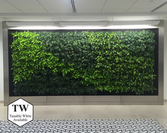 Delta Life Green Wall – Accentra Suspended Mount